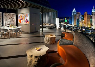 Skyline Terrace Suite